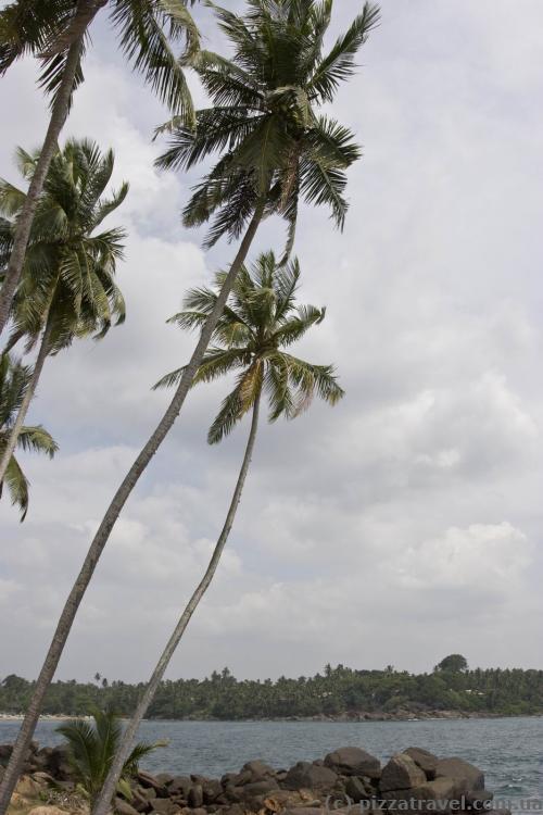 Мыс Дондра - самая южная часть Шри-Ланки