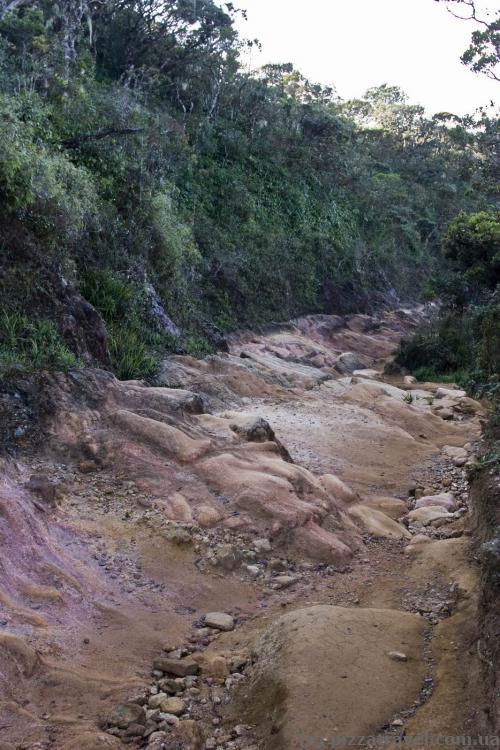Тяжелая тропинка на плато Хортон