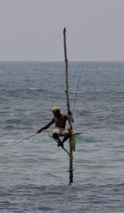 Рыбак на шесте в бухте Велигама