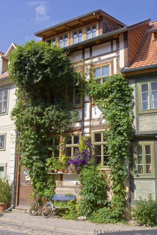 Зеленый дом в Кведлинбурге