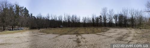 Огромная площадка около охотничьего домика, выложенная плиткой