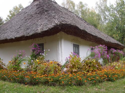 Дом крестьянина-середняка
