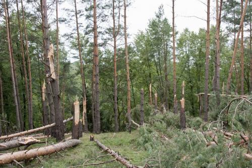 Последствия урагана в июле 2012 года