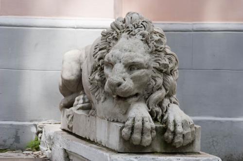 Веселый лев