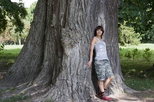 Огромное дерево в парке Александрия в Белой Церкви