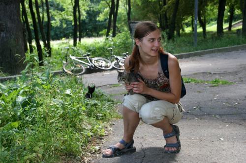 У парку виявили виводок кошенят