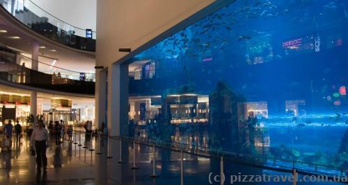 Самое большое в мире стекло аквариума в Дубай Молл