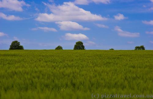 Красивые пейзажи на полях около замка