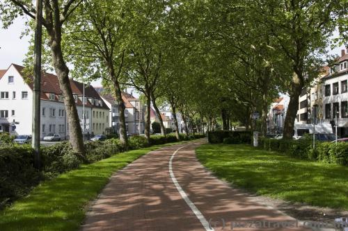 Вокруг центра города проходит аллея с велосипедной дорожкой.
